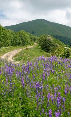 Пеший поход по маршруту Гумух – Гашгачай